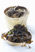 A basket of fresh oysters, seaweed Stock Photos