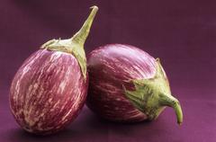 Two aubergines Stock Photos