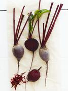 Peeled and unpeeled beetroot on paper Stock Photos