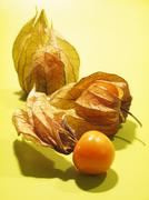 Physalis with husks Stock Photos