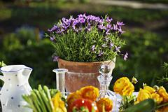 Fresh vegetables and flowers on a summery table outside Stock Photos