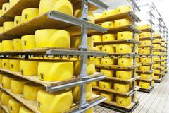 Queijo de Sao Jorge (cows milk cheese, Azores) in a dairy Stock Photos