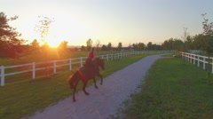 AERIAL: Beautiful gelding cantering along the fields on sunny evening Stock Footage