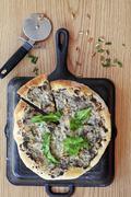 A mushroom and pine nut pizza Stock Photos