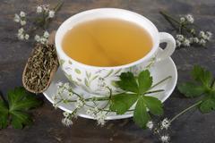 Wood sanicle ((Sanicula europaea): tea, tea leaves and fresh herbs Stock Photos