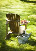 Wooden Adirondack Chair with Peaches on the Arm; Two Metal Watering Cans Stock Photos