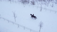AERIAL: Young female rider horseback riding horse in winter wonderland Arkistovideo