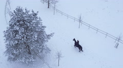 AERIAL: Young woman horseback riding a horse in winter wonderland Stock Footage