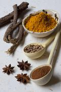 A Variety of Spices, Fresh, Whole and Ground Stock Photos