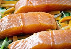 Salmon fillets on a bed of courgette, carrots and leek Stock Photos