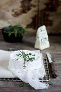 Camembert and Roquefort with thyme Stock Photos