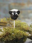 A cake pop (a chocolate sheep) Stock Photos
