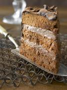 A slice of chocolate torte on a cake slice Stock Photos