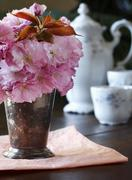 Cherry Blossoms in a Vase with Antique Tea Setting in Background Stock Photos