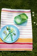 A cleared plate and picnic crockery on a striped cloth Stock Photos