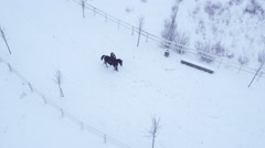AERIAL: Young girl rider horseback riding horse in winter wonderland Stock Footage