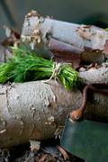 A Bundle of Fresh Dill with a Vintage Herb Chopper on a Pile of Wood Stock Photos