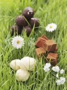 Assorted chocolates in artificial grass Stock Photos