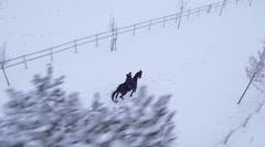 AERIAL: Female horseback riding big horse on snowy field in winter wonderland Stock Footage