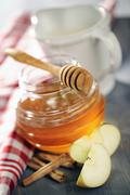 Honey with dipper, apple slices and cinnamon Stock Photos