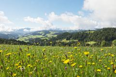 A view from Moosegg (canton of Bern, Switzerland) into Emmental and the Bernese Stock Photos