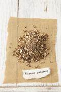 Dried sweet flag (Acorus calamus) Kuvituskuvat