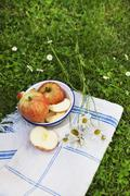 A whole apple and apple wedges in an old enamel bowl on a linen cloth in a Stock Photos