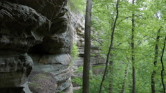 Natural Bridge State Park Devil's Gulch Cliff Wall Stock Footage