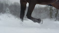 SLOW MOTION: Snowy horses legs rising snow while running in deep snow blanket Stock Footage