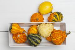 Assorted varieties of ornamental squash Stock Photos