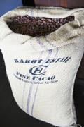 Lots of cocoa beans in a gunny sack Stock Photos
