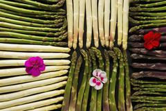 An arrangement of various different types of asparagus (seen from above) Stock Photos