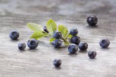 Fresh blueberries on a wooden surface Stock Photos