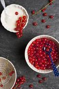 Bowls of redcurrants and yogurt Stock Photos