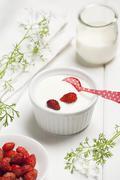Yogurt cream with wild strawberries Stock Photos