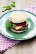 Grilled cheeseburger with tomatoes and basil on a green plate Stock Photos