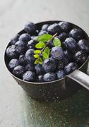 Freshly washed blueberries in a saucepan Stock Photos