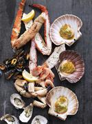 An arrangement of mussels and lobster Stock Photos