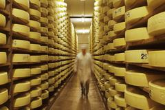 Alpine cheese in a storage room at a dairy in Walchsee, Tyrol, Austria Stock Photos