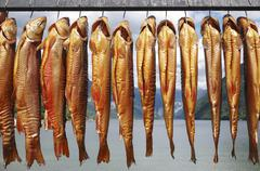 Smoked Arctic char from the Ausseerland region (Styria, Austria) Stock Photos