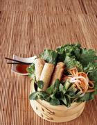 Vegetarian spring rolls on a bed of lettuce with daikon radish and carrots Stock Photos