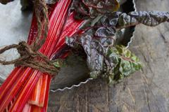 A bundle of red chard (detail) Stock Photos