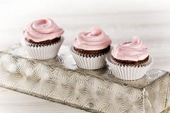 Three chocolate cupcakes with pink frosting Stock Photos