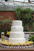 A white, four tier wedding cake with mini boxes of pralines as gifts Stock Photos