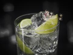 A Gin & Tonic with ice cubes garnished with lime and flowers Stock Photos