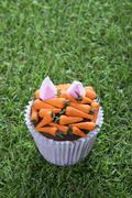 An Easter cupcake decorated with carrots and rabbit ears Stock Photos
