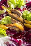 A colourful salad with duck breast, orange fillets and pomegranate seeds Stock Photos