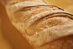 Batard bread from France Stock Photos