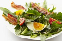 Dandelion leaf salad with tomatoes, hard-boiled eggs and fried bacon Stock Photos