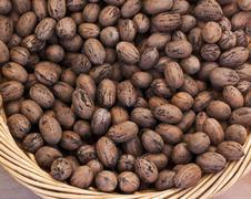 Unshelled pecan nuts in a basket Stock Photos